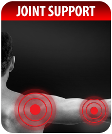 JOINT SUPPORT SUPPLEMENTS by Vitamin Prime