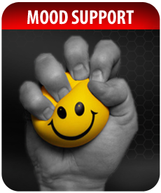 MOOD SUPPORT SUPPLEMENTS by Vitamin Prime
