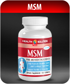 MSM | Joint Support by Vitamin Prime