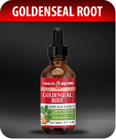Goldenseal Root Drops by Vitamin Prime