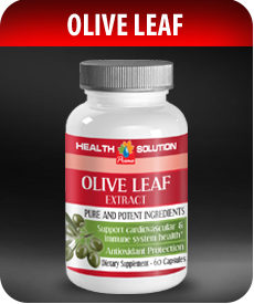 Olive Leaf  by Vitamin Prime
