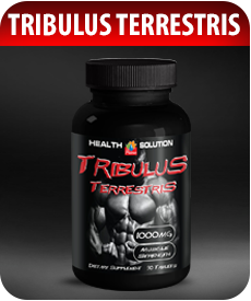 Tribulus Terrestris Testostereone Booster by Vitamin Prime